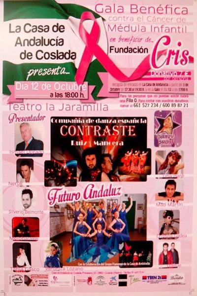 cartel gala fenéfica coslada2014web